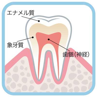 急いで歯医者に行こう!虫歯の放置があまりにも危険な16の理由